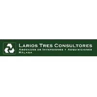 LARIOS 3 CONSULTORES